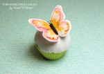 The Stamp Review Crew features Watercolour Wings. Stamping on fondant icing. Details @ www.thepapercaper.com.au
